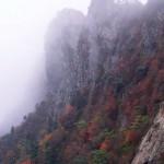 天狗岳の秋